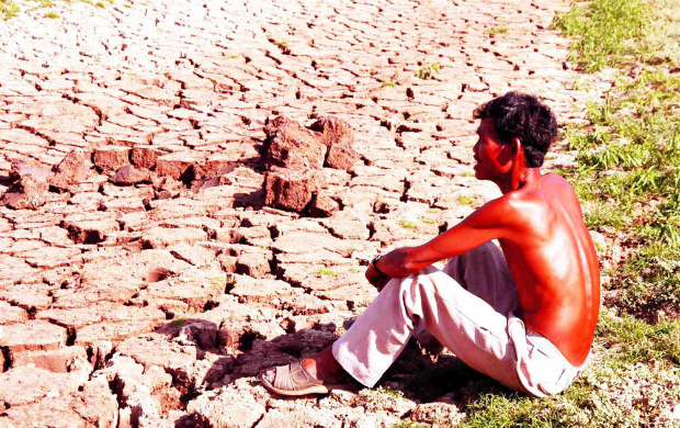 worst-drought-and-salinity-to-threaten-rice-supply-of-the-world-4