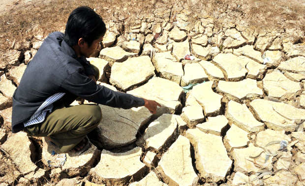 worst-drought-and-salinity-to-threaten-rice-supply-of-the-world-5