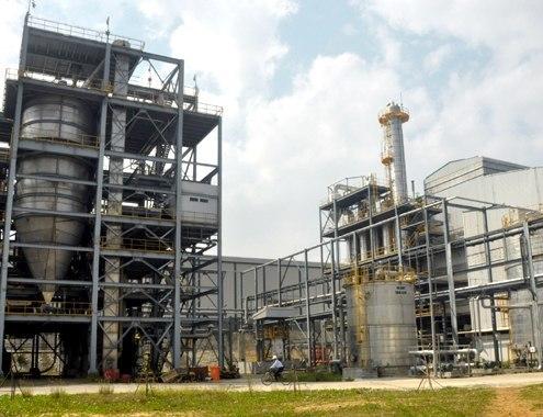 Biofuel plant halts production