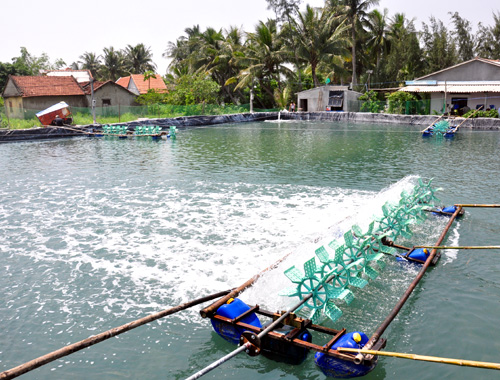 turbulent-weather-takes-its-toll-on-mekong-deltasaquaculture