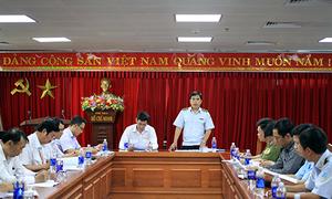 Zika virus-linked mosquito type found in Da Nang International Airport