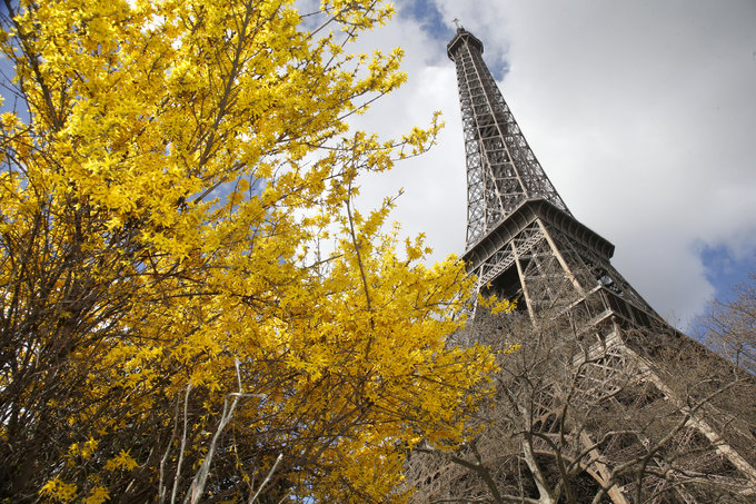 France visitor numbers up in 2015 despite attacks