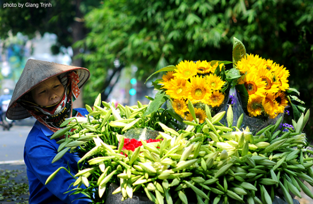 Vendors sell bunches of 10 lilies for VND35,000.