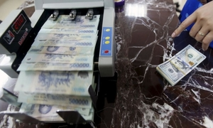 SBV official: Vietnam not ready yet for free floating exchange rate