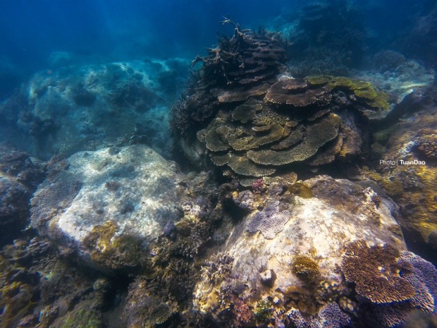 The coral reef is only two to four meters deep, and circles the islands.