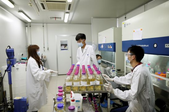 in-chinas-tougher-drug-market-minnows-open-back-door-for-big-pharma-2