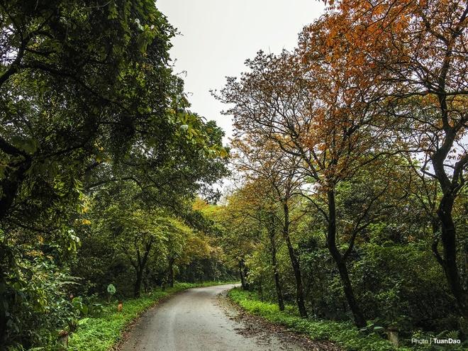 ba-vi-national-park-breathes-romance-into-hanoi-2