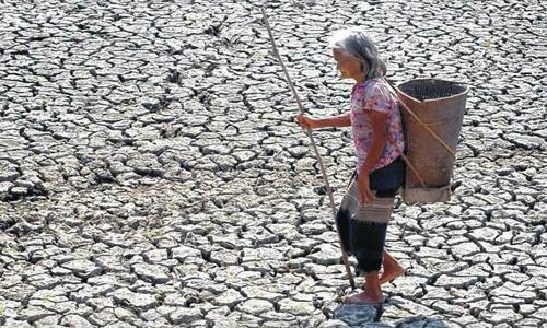 EU grants Vietnam $100,000 to overcome historic drought