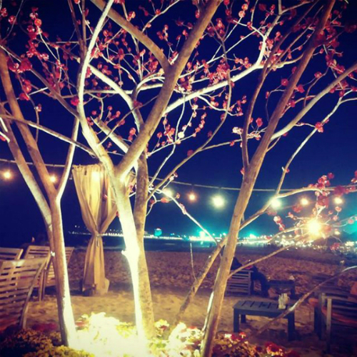 bars-on-the-beach-rocking-away-the-night-in-quy-nhon-9