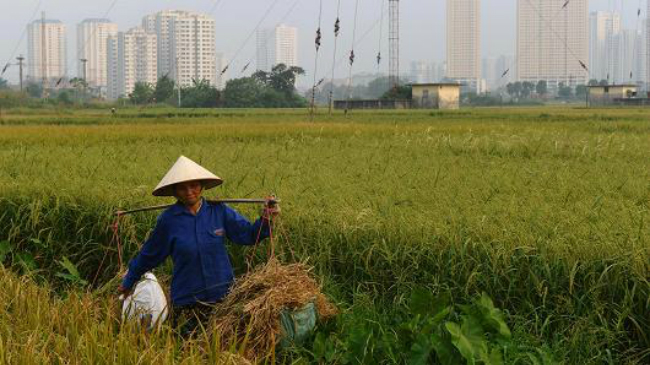 cia-delves-into-vietnams-economy