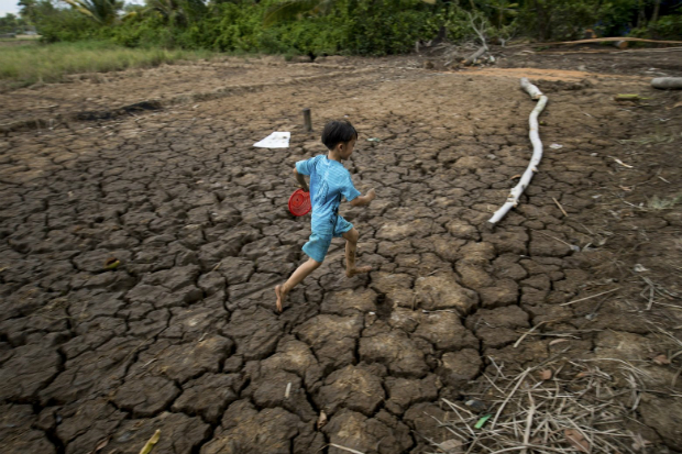 record-drought-costs-vietnam-670-million-in-agriculture-losses-1