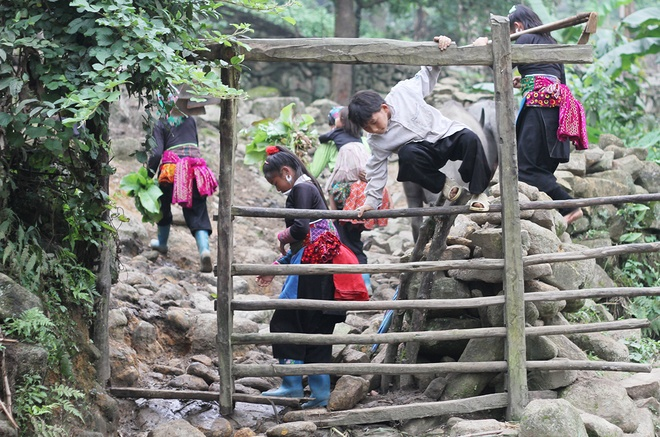 mountainous-kids-take-on-back-breaking-work-with-a-smile-8