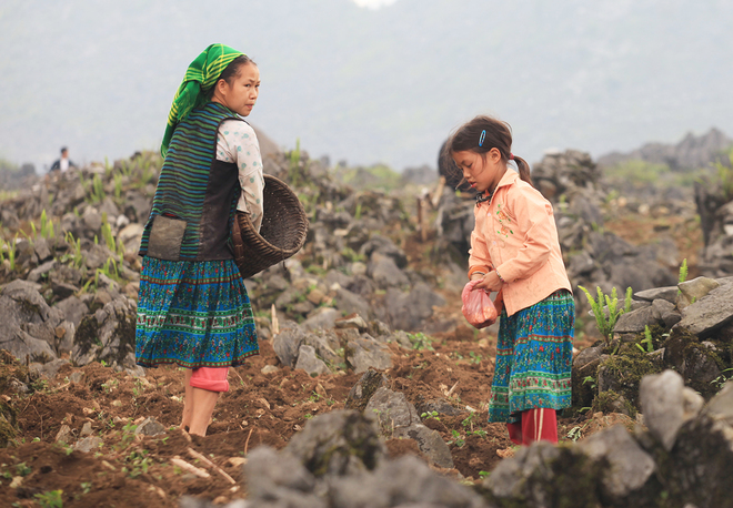 mountainous-kids-take-on-back-breaking-work-with-a-smile-9
