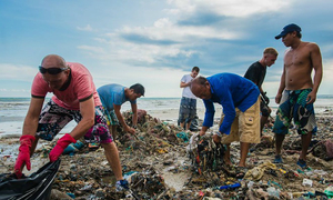 Tourists help with Vietnam beach clean-up as authorities drag their heels