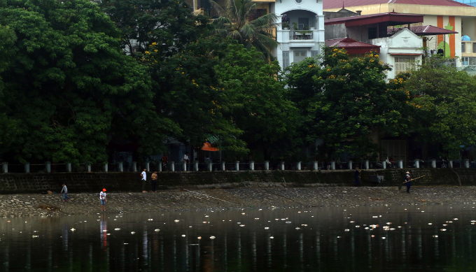 hanoi-lake-latest-to-of-dead-fish-assive-dead-fish-stay-afloat-in-hanoi-lake