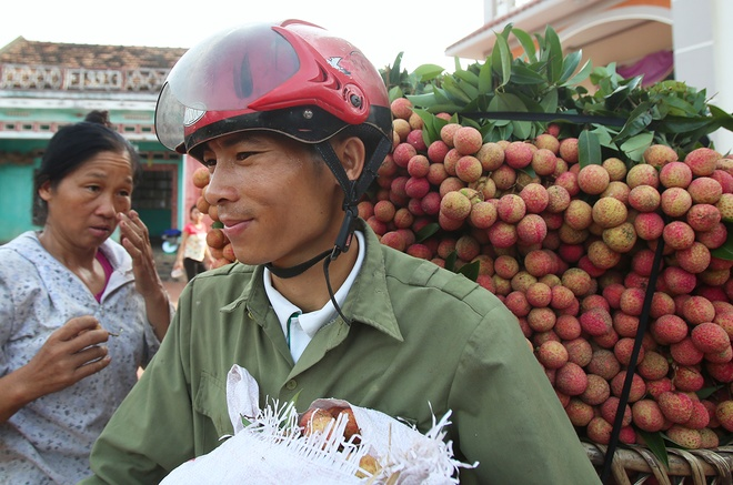 vietnamese-farmers-lick-their-lips-at-rising-lychee-prices-8