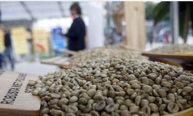 Expectations of poor robusta coffee crops could spur price rally