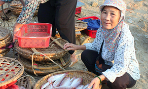 Vietnamese fishermen head overseas for work after pollution kills off catch