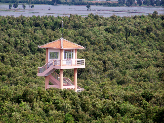 An observatory tower was erected to serve the sightseeing purpose. Twice a day, from here, visitors stand a chance to watch birds of white feather in the most splendid act of nature.