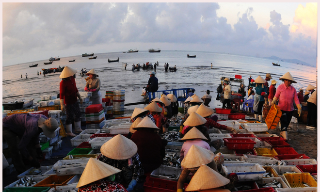 Selling fish by the sea. Photo by Tran Quy/VnExpress Photo Contest.