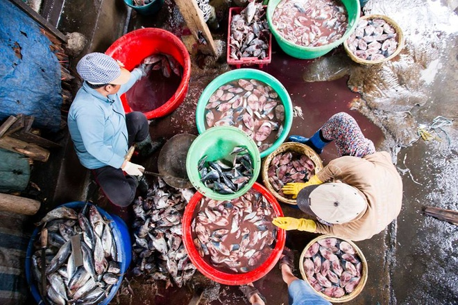 salt-sweat-and-scales-the-village-that-boils-fishwith-a-3-000-km-coastline-vietnam-has-fish-to-burn-but-one-village-chose-to-boil-them-1
