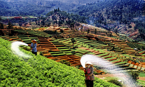 Vietnamese land users set to benefit from WB's $150 million loan
