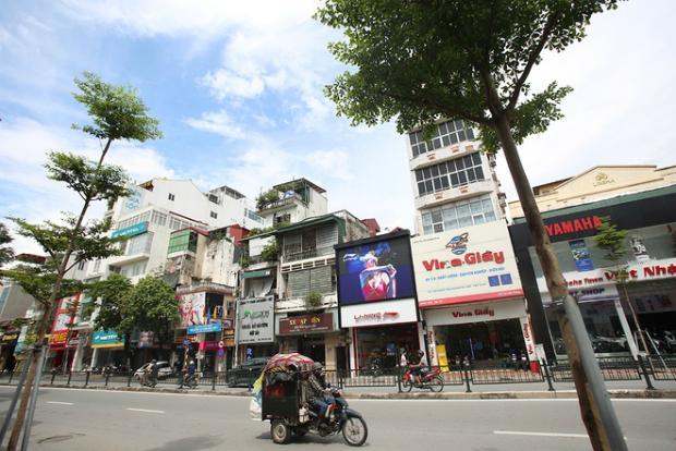 hanois-million-tree-planting-project-ed-7