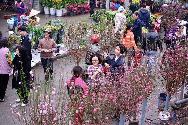 Rực rỡ phiên chợ Hà Nội cuối năm