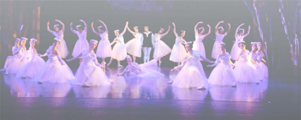 a-night-of-concert-and-ballet
