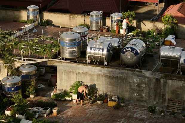 rooftop-farming-takes-off-in-hanoi