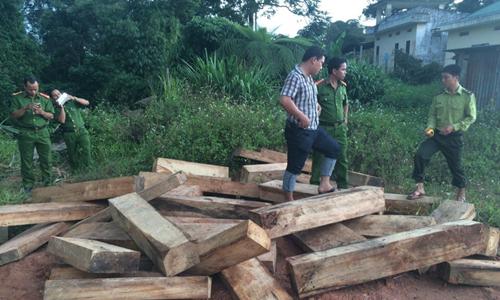 Vietnam's border guards suspended following precious wood logging near Laos