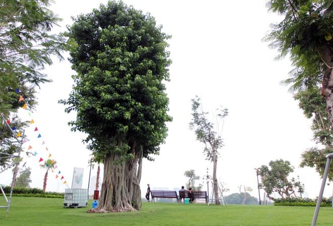 saigon-opens-its-biggest-ever-riverside-park-2
