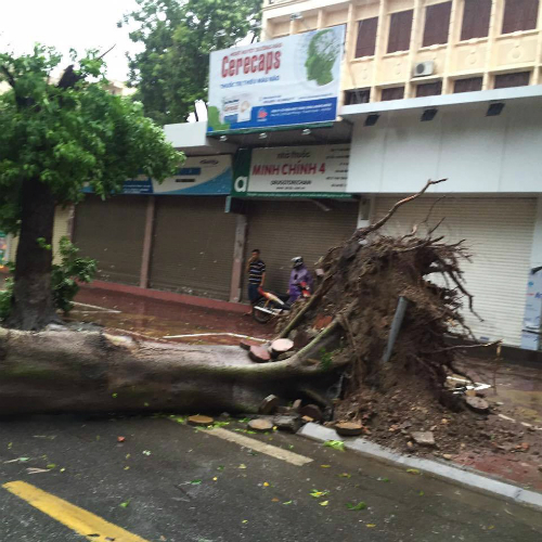 2-dead-1-missing-as-typhoon-triggered-downpours-punish-northern-vietnam-5