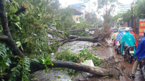 2-dead-1-missing-as-typhoon-triggered-downpours-punish-northern-vietnam-3