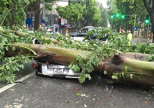 Hanoi issues flood alert as Typhoon Mirinae pounds northern Vietnam