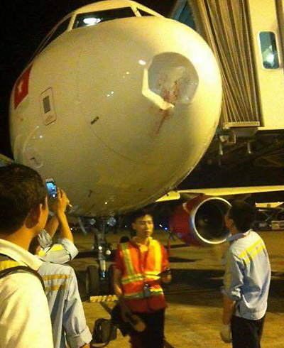 vietnam-airlines-plane-turns-back-after-bird-crashes-into-engine