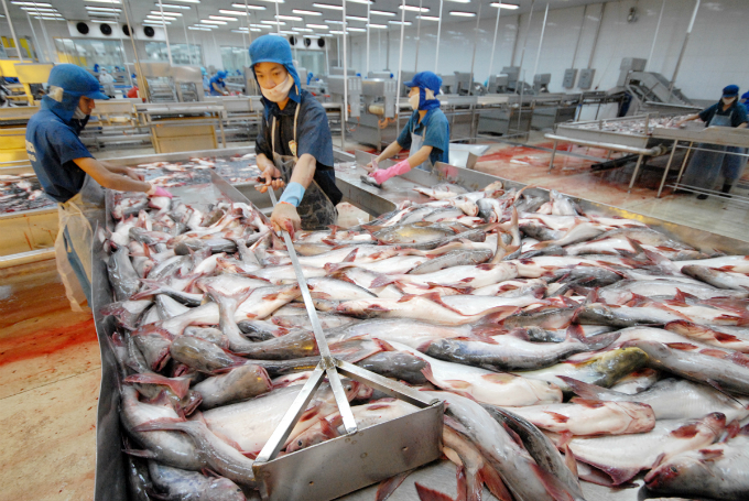 vietnam-takes-action-against-seafood-firms-after-eu-issues-food-safety-warning