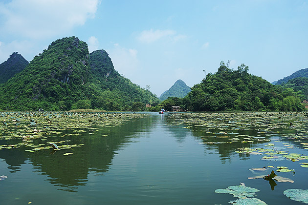 There also exist medicinal herbs, bonsai-like plants and wide animals in the area.