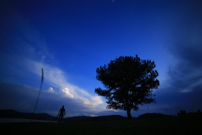da-lats-lonely-tree-offers-shelter-for-the-night-6