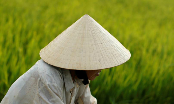 Vietnamese farmer to receive UN award for helping women adapt to climate change