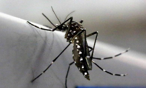 4th Zika case in Vietnam is German woman