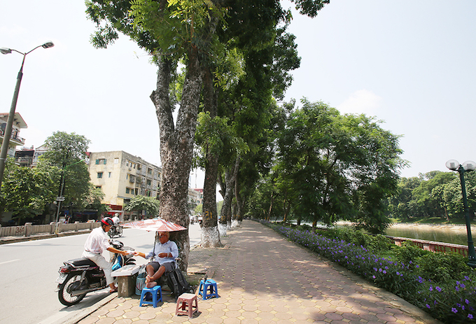 Dao Dinh Tung, a 82-year-old man who has been selling lottery tickets on the street for more than 30 years, said he is sad that all the trees will just be memory in a couple days.