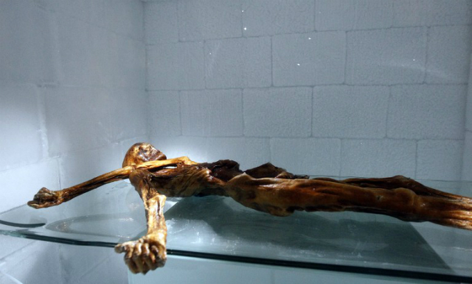 The mummy of an iceman named Oetzi, discovered in 1991 in the Italian Schnal Valley glacier, on display at the Archaeological Museum of Bolzano, Italy. Photo by AFP/Andrea Solero/File Photos