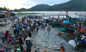 Vietnam unveals plan for inspecting seafood affected by toxic spill