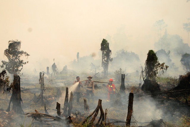indonesia-rejects-us-research-estimate-of-100-000-haze-deaths