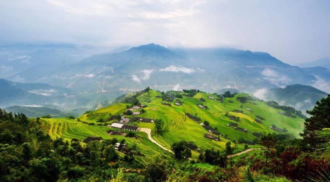harvest-season-in-vietnams-golden-north