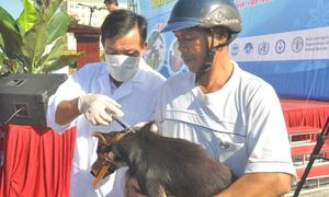 49 Vietnamese killed by rabies in nine months