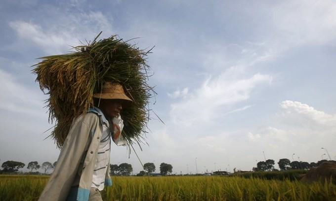 Over 1 million Vietnamese live in hunger
