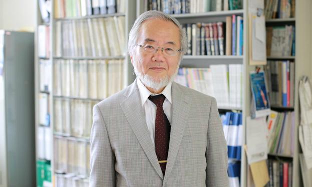 Japanese scientist wins 2016 Nobel medicine prize