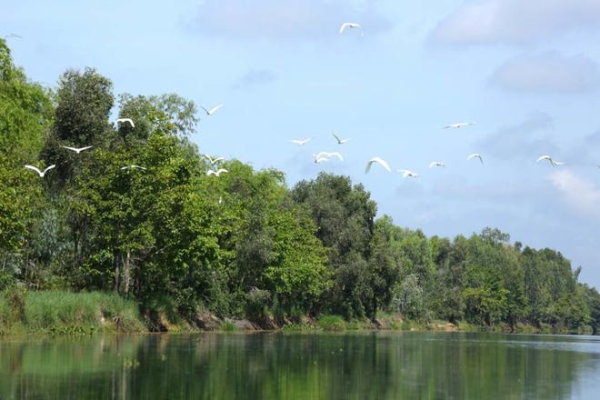 the-mekong-deltas-monsoon-river-ride-1